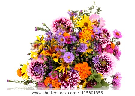 Belo buquê flores silvestres girassol mãos menina Foto stock © ruslanshramko