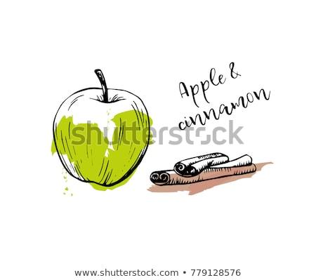 Mela logo clipart vettore frutta alimentare Foto d'archivio © blaskorizov