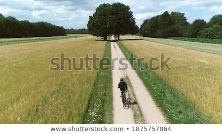 Foto stock: Naturalismo · jovem · ciclista · surpreendente · ver · elegante