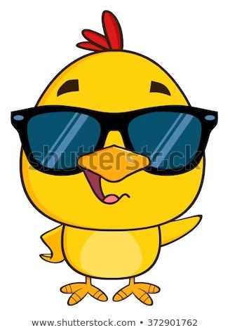 Giallo chick indossare occhiali da sole Foto d'archivio © hittoon