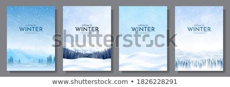 illusztráció · tél · erdő · tájkép · szett · hegyek - stock fotó © bluering