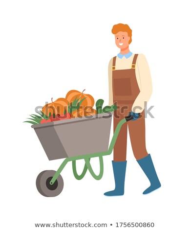 man pushing cart with organic veggies harvesting stock photo © robuart