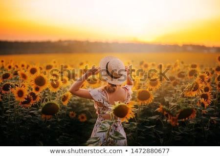 gezonde · landelijk · leven · vrouw · groene · veld - stockfoto © lopolo