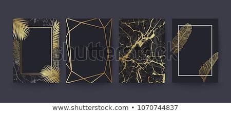 lüks · şablon · siyah · altın · bağbozumu - stok fotoğraf © blue-pen