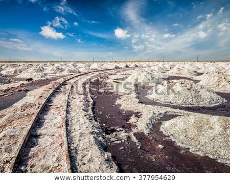 Só bánya tó India Stock fotó © dmitry_rukhlenko