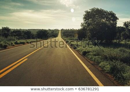 Road in Brazil  Stock photo © Spectral