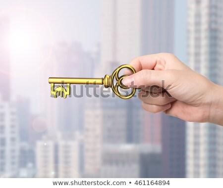 hand · huis · sleutel · 3D · handen - stockfoto © dacasdo