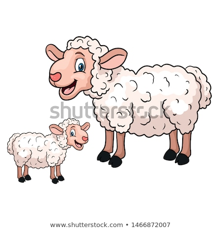 Cartoon sheep, vector lamb vector illustration © Sweet Lana