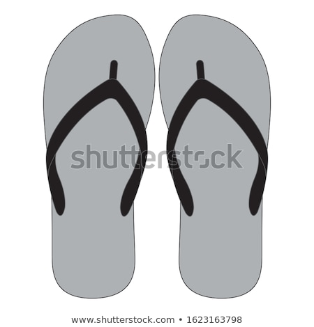 vector pair of leather flip flops Stock photo © freesoulproduction