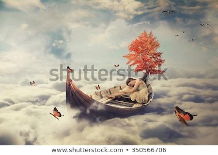 ciel · fumée · nuages · vitesse · machine · coucher · du · soleil - photo stock © Aliftin