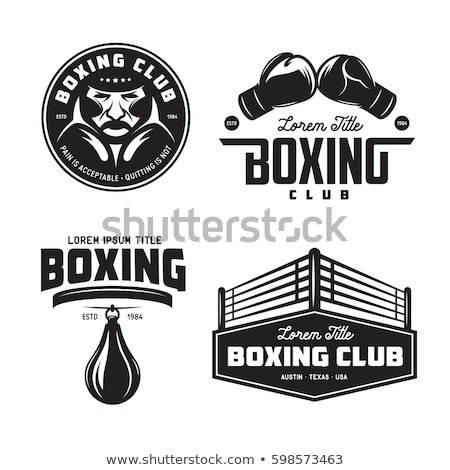 Boxing fighters set stock photo © Kaludov