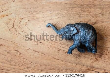 elefánt · sétál · vad · hátsó · nézet · nagy · park - stock fotó © pzaxe