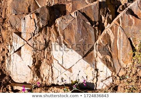 gebarsten · rock · gezicht · full · frame · licht · bruin - stockfoto © kash76