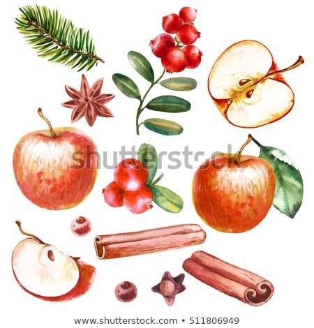 クリスマス 装飾 赤いリンゴ シナモン アニス ツリー ストックフォト © juniart