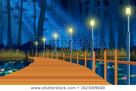 Stock photo: Wood bridge at night