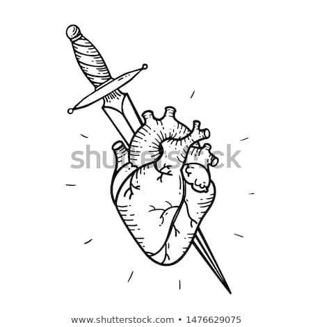 kard · szív · tetoválás · rózsa · divat · absztrakt - stock fotó © creative_stock