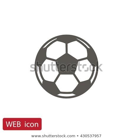 Soccer Ball icon Stock photo © WaD