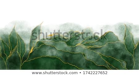 Green streak paper Stock photo © DoraKatona