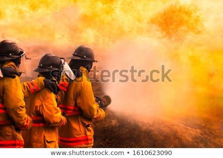 environmental leadership stock photo © lightsource