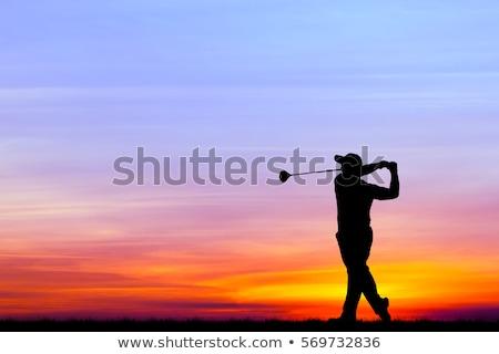 silueta · hombre · golf · swing · carrito · golfista - foto stock © DonLand