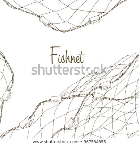 漁網 青 ロープ 魚 ツール 産業 ストックフォト © smithore