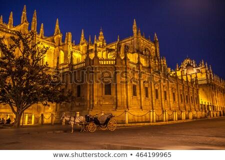 大聖堂 1泊 詳細 ゴシック バロック スペイン ストックフォト © aladin66