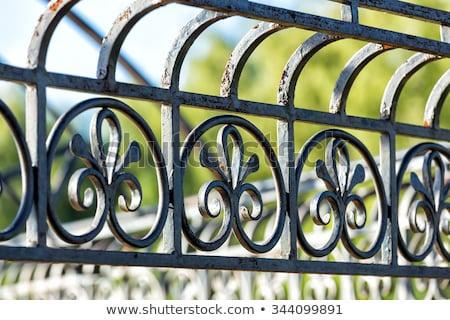 Rusted wrought iron fence Stock photo © haraldmuc