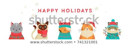 Winter Holiday Hat Stock photo © Lightsource