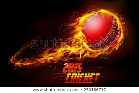 lángoló · krikett · labda · illusztráció · tűz · sport - stock fotó © Krisdog