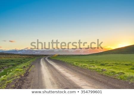 Sentier herbeux domaine été jour ciel Photo stock © OleksandrO
