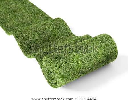 rolling eco green carpet Stock photo © tiero