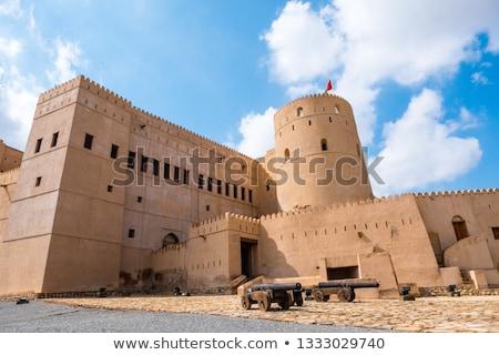 Kanon fort afbeelding boom Blauw reizen Stockfoto © w20er