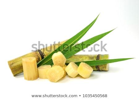 Cana de açúcar comida cozinhar cubo marrom ingrediente Foto stock © M-studio