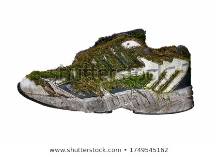 Covered with moss shoes on a white background Stock photo © premiere