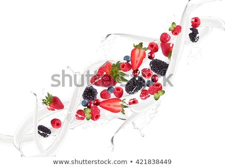 Stock photo: Milk with berries