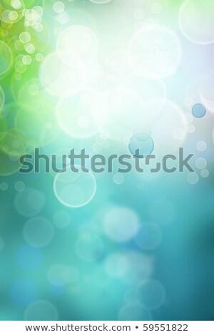 Fraktal soyutlama deniz bo örnek güneş Stok fotoğraf © yurkina