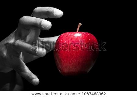 Gyümölcs bűn illusztráció nő szeretet alma Stock fotó © adrenalina
