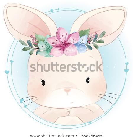 Nyúl lány sziluett visel fülek bolyhos Stock fotó © Bigalbaloo