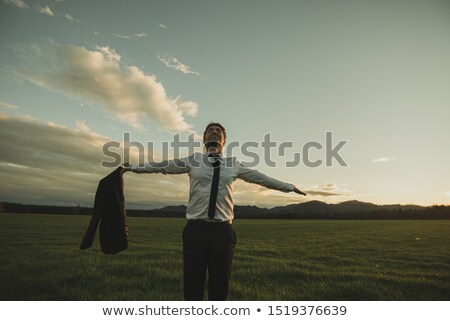 Stock photo: Businessman standing with spreading hands on the meadow