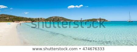 Panoramic view of Rondinara beach in Corsica stock photo © Joningall
