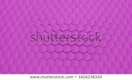 set of abstract pink graduation elements stock photo © ptichka