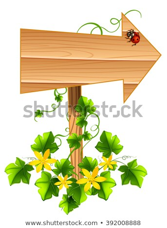 Wooden arrow with ladybug and vine Stock photo © bluering