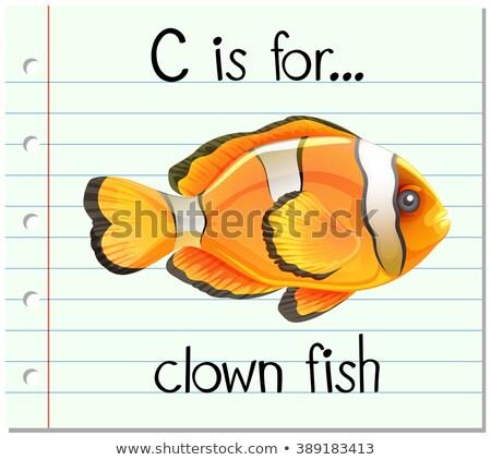 Letra c palhaço peixe ilustração fundo arte Foto stock © bluering