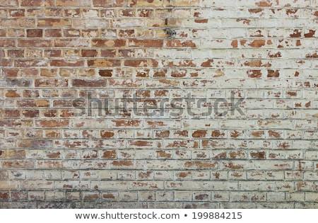 Black peeling paint on a rusty surface. Stock photo © latent