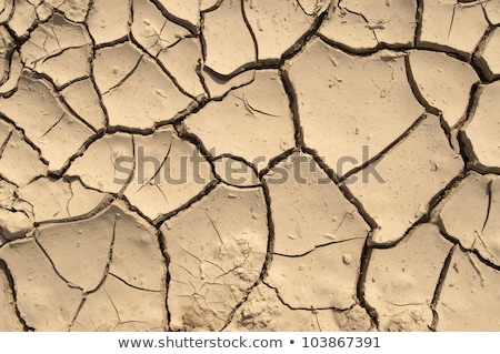 Cracked and Arid Mud Ground Dry without water Stock photo © kayros