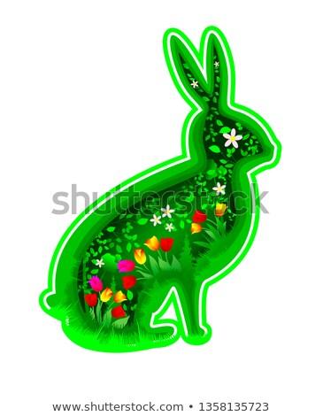 стилизованный кролик окрашенный черный линия пушистый Сток-фото © blackmoon979