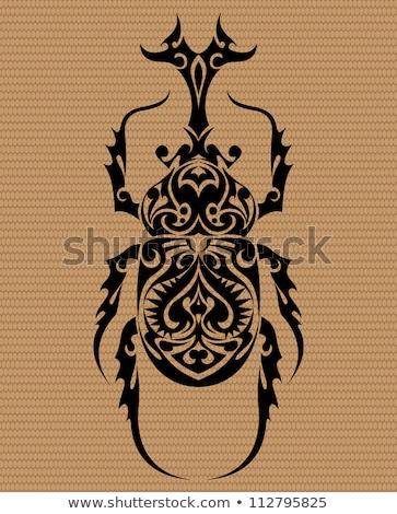 два стилизованный жук Scary Сток-фото © blackmoon979