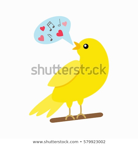 canari · design · vecteur · domestique · songbird · style - photo stock © robuart