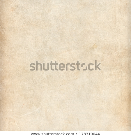Empty lined note book page with torn edge Stock photo © pakete