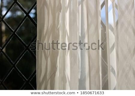 beyond the dark curtain stock photo © fisher